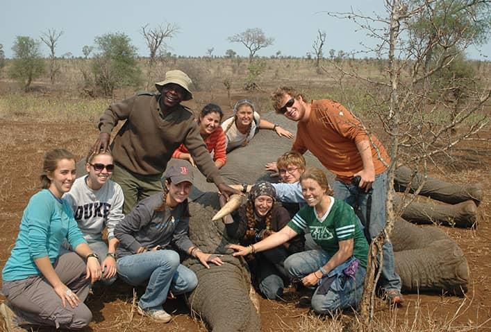 AfricanEcology_1