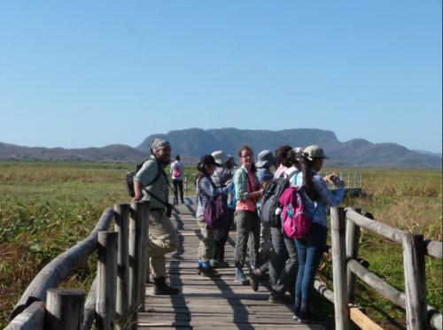 Experiencias de curso: Ecología Tropical y Conservación 2019
