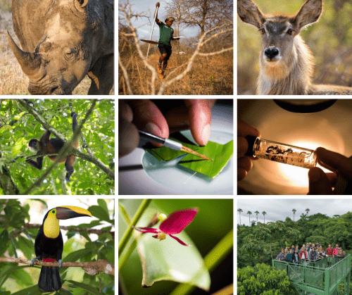 Concurso de Fotografía para Calendario OET 2020